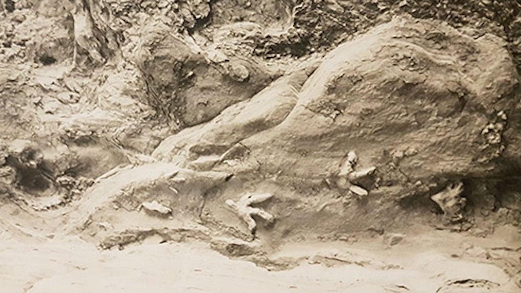 pootafdrukken grot