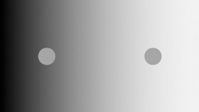 optische illusie Chub-illusie